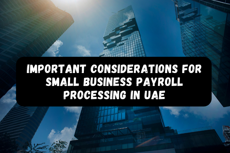 Important Considerations for Small Business Payroll Processing in UAE