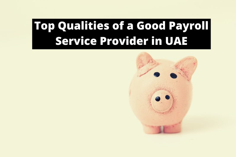 Top Qualities of a Good Payroll Service Provider in UAE