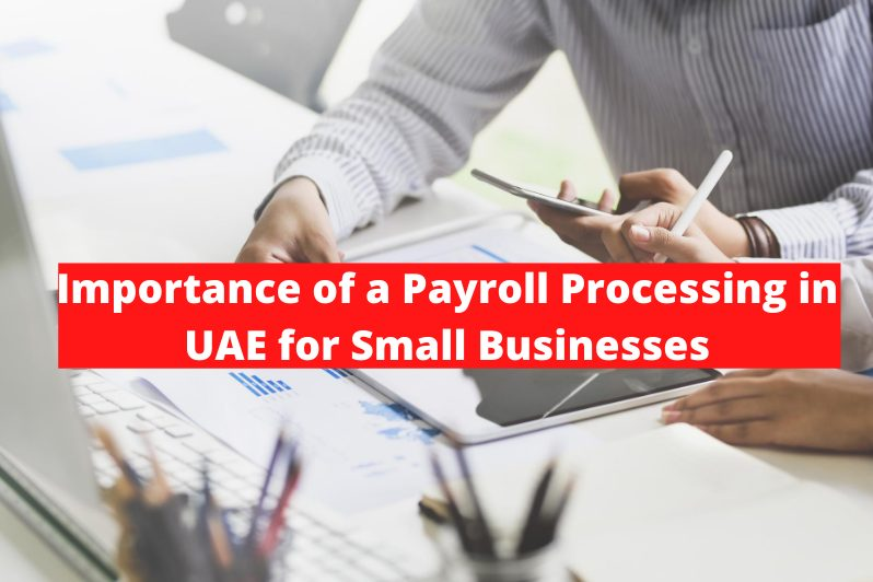 Payroll Processing in UAE