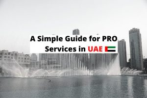 pro services in UAE - UAE Flag