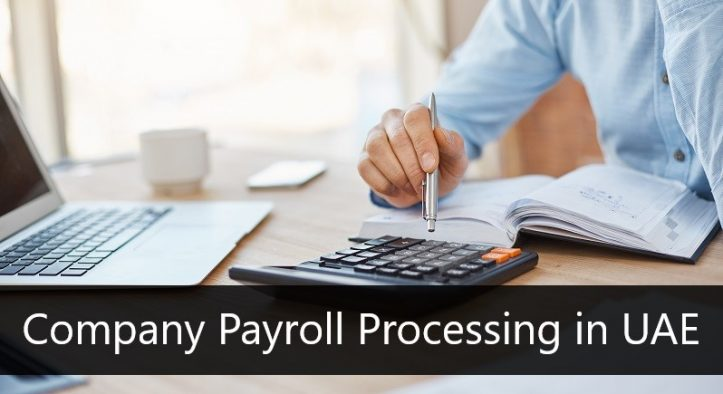 Options of Company Payroll Processing in UAE