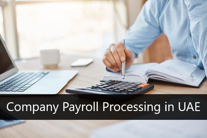 Company Payroll Processing in UAE